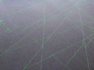 toile d'araignée au sol